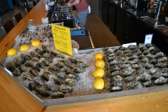 Oysters in Ice with Lemons